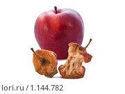 Красное яблоко и огрызки на белом изолированном фоне. Стоковое фото, фотограф Наталья Ревкина / Фотобанк Лори