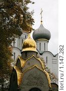 Купола часовни Новодевичьего монастыря. Стоковое фото, фотограф Sergey Kashchavtsev / Фотобанк Лори