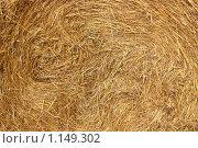 Фрагмент стога сена. Стоковое фото, фотограф Маснюк Мария / Фотобанк Лори
