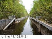 Купить «Соловецкие острова. Каналы между озерами.», фото № 1152042, снято 12 сентября 2009 г. (c) Михаил Ворожцов / Фотобанк Лори