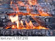 Купить «Огонь», фото № 1157210, снято 31 мая 2008 г. (c) Лилия Барладян / Фотобанк Лори