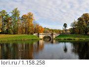 Купить «Карпин пруд и мост в Гатчине», фото № 1158258, снято 11 октября 2009 г. (c) Татьяна Савватеева / Фотобанк Лори