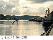 В порту (2008 год). Редакционное фото, фотограф Юля Волкова / Фотобанк Лори