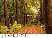 Купить «Кирпичный мост в осеннем парке», фото № 1164742, снято 9 октября 2005 г. (c) Бабенко Денис Юрьевич / Фотобанк Лори