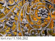Решетка Михайловского сада. Санкт-Петербург (2009 год). Редакционное фото, фотограф Александр Алексеев / Фотобанк Лори