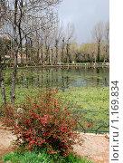 Городское озеро, пейзаж, Марокко (2009 год). Стоковое фото, фотограф Ирина Хаврошина / Фотобанк Лори