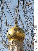Купить «Осенний этюд», фото № 1171098, снято 20 октября 2009 г. (c) Яременко Екатерина / Фотобанк Лори