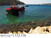 Купить «Баржи», фото № 1172118, снято 15 сентября 2005 г. (c) Бабенко Денис Юрьевич / Фотобанк Лори