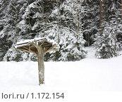 Купить «Навес в зимнем лесу», фото № 1172154, снято 15 февраля 2009 г. (c) Наталия Каупонен / Фотобанк Лори