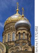 Купола храма Святой Анны (2009 год). Стоковое фото, фотограф Антон Тимохин / Фотобанк Лори