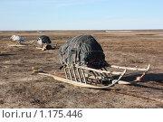 Зимние вещи. Стоковое фото, фотограф Леонид Сергиенко / Фотобанк Лори