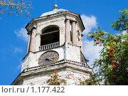 Часовая башня. Выборг (2009 год). Стоковое фото, фотограф Александр Щепин / Фотобанк Лори