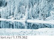 Зимний пейзаж. Стоковое фото, фотограф hunta / Фотобанк Лори
