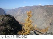 Далина реки Чулышмае, Республика Алтай. Стоковое фото, фотограф Александр Литовченко / Фотобанк Лори