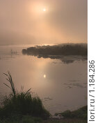 Купить «Туманное утро на берегу пруда», фото № 1184286, снято 2 сентября 2009 г. (c) Сергей Костюров / Фотобанк Лори