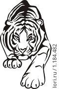 Купить «Белый тигр на белом фоне», иллюстрация № 1184482 (c) Ярослав Крючка / Фотобанк Лори
