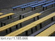 Скамейки в парке на стадионе. Стоковое фото, фотограф Лютоев Игорь / Фотобанк Лори