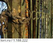 Купить «Ржавая цепь. Железные ворота», фото № 1188222, снято 3 января 2008 г. (c) Ann Perova / Фотобанк Лори