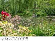 Озеро в цветущем саду (2009 год). Стоковое фото, фотограф Aleksey Trefilov / Фотобанк Лори