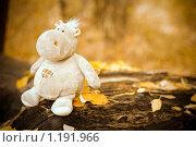 Игрушечный бегемот в осеннем парке. Стоковое фото, фотограф Полина Бублик / Фотобанк Лори