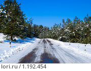 Купить «Зима», фото № 1192454, снято 22 февраля 2009 г. (c) Овсяник Анна Владимировна / Фотобанк Лори