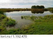 Купить «Озеро», фото № 1192470, снято 10 октября 2009 г. (c) Овсяник Анна Владимировна / Фотобанк Лори