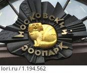 Московский зоопарк (2008 год). Редакционное фото, фотограф Татьяна Емельянова / Фотобанк Лори