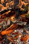 Огонь, фото № 1201462, снято 31 октября 2004 г. (c) Кравецкий Геннадий / Фотобанк Лори