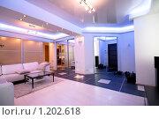 Купить «Современный интерьер», иллюстрация № 1202618 (c) Виктор Застольский / Фотобанк Лори