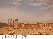 Купить «Сирия. Пальмира. Руины древнего города», фото № 1214578, снято 27 октября 2009 г. (c) Maria Kuryleva / Фотобанк Лори