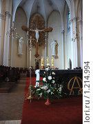 Купить «Внутреннее убранство Кафедрального Собора Непорочного Зачатия Пресвятой Девы Марии. Москва», эксклюзивное фото № 1214994, снято 27 апреля 2009 г. (c) lana1501 / Фотобанк Лори