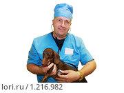 Купить «Ветеринар и такса. Прослушивание сердца», фото № 1216982, снято 8 июля 2009 г. (c) Галина Бурцева / Фотобанк Лори