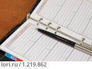 Купить «Ручка на записной книжке», фото № 1219862, снято 15 ноября 2009 г. (c) Nickolay Khoroshkov / Фотобанк Лори