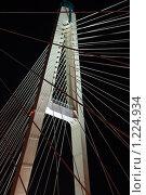 Вантовый мост (2009 год). Стоковое фото, фотограф Дмитрий Спецаков / Фотобанк Лори