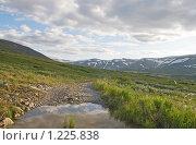 Купить «Приполярный Урал», фото № 1225838, снято 14 июля 2009 г. (c) Надежда Болотина / Фотобанк Лори