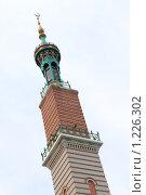 Купить «Саратовская соборная мечеть (минарет)», фото № 1226302, снято 13 ноября 2009 г. (c) 1Andrey Милкин / Фотобанк Лори