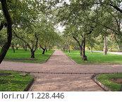 Коломенское. Яблоневый сад (2009 год). Редакционное фото, фотограф Анатолий Сверчков / Фотобанк Лори