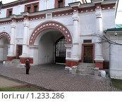 Коломенское. Ворота (2009 год). Редакционное фото, фотограф Анатолий Сверчков / Фотобанк Лори