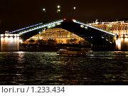 Купить «Дворцовый мост в Санкт-Петербурге ночью», фото № 1233434, снято 24 мая 2009 г. (c) Оксана Кацен / Фотобанк Лори
