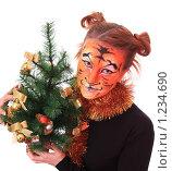 Купить «Девушка-тигр с новогодней елкой», фото № 1234690, снято 18 ноября 2009 г. (c) Юлия Машкова / Фотобанк Лори