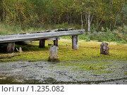 Купить «Соловецкие острова. Бывшая пристань на озере.», фото № 1235082, снято 12 сентября 2009 г. (c) Михаил Ворожцов / Фотобанк Лори