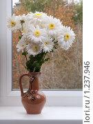 Купить «Букет осени на окне», фото № 1237946, снято 20 ноября 2009 г. (c) Королевский Василий Федорович / Фотобанк Лори