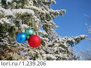 Купить «Новый год», фото № 1239206, снято 5 августа 2020 г. (c) A Челмодеев / Фотобанк Лори