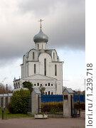 Православный храм, Санкт-Петербург (2009 год). Стоковое фото, фотограф Алексей Артамонов / Фотобанк Лори