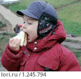 Купить «Вкуснятина», фото № 1245794, снято 27 ноября 2009 г. (c) Марьичева Марина / Фотобанк Лори
