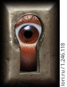 Купить «Глаз в замочной скважине», фото № 1246118, снято 15 ноября 2009 г. (c) Михаил Коханчиков / Фотобанк Лори