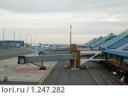 Купить «Таллинский аэропорт», фото № 1247282, снято 14 апреля 2009 г. (c) Игорь Соколов / Фотобанк Лори