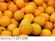 Апельсины. Стоковое фото, фотограф Аврам / Фотобанк Лори
