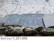 Непал. Окрестности горы Манаслу (2009 год). Стоковое фото, фотограф Михаил Ворожцов / Фотобанк Лори