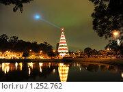 Рождественская ель, Сан Пауло. Бразилия. (2008 год). Редакционное фото, фотограф Оксана Sk / Фотобанк Лори